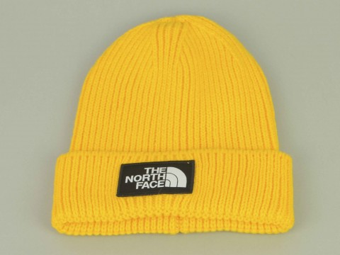 THE NORTH FACE CAPPELLO INVERNALE Unisex NF0A3FJX70M